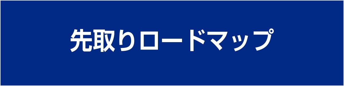 東進NET先取りロードマップ